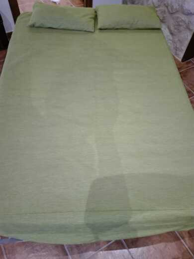 Imagen producto Sofa cama casi nuevo 2