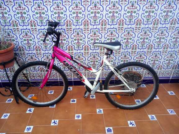 Imagen Bicicleta mujer