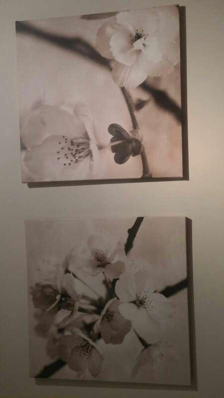 Imagen cuadros