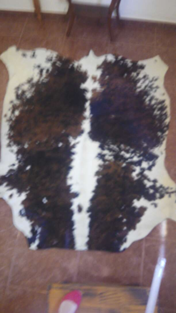 Imagen alfombra de torro normando