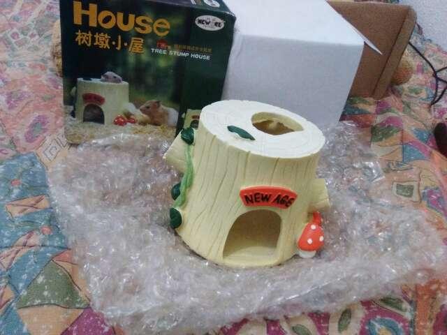 Imagen casita roedores pequeños