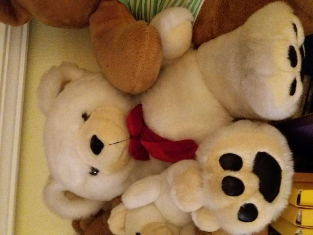 Imagen producto Oso peluche  1