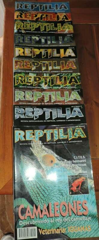 Imagen Lote revistas de reptiles Reptilia
