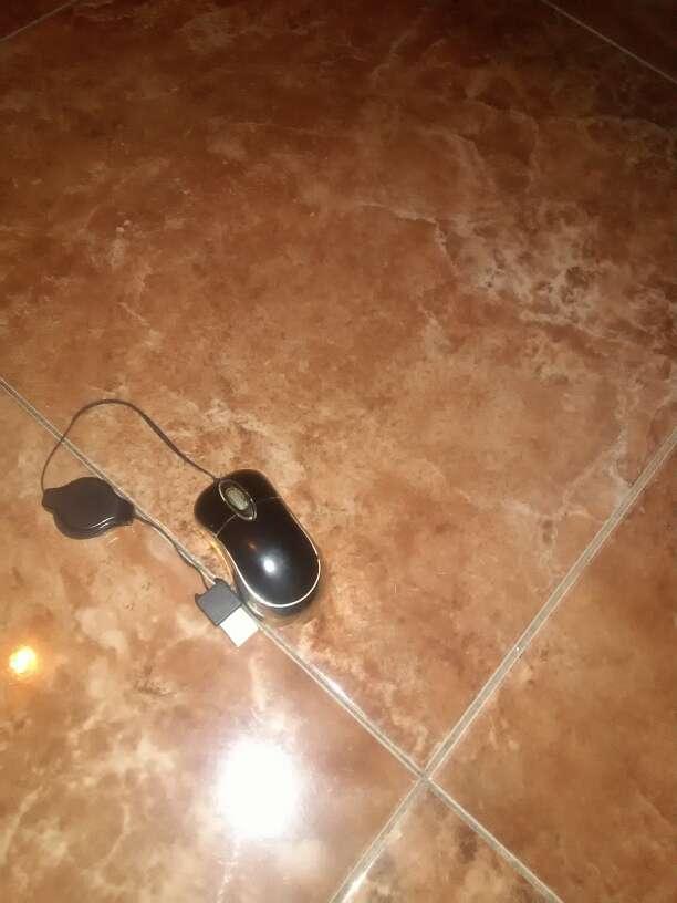 Imagen ratón pequeño para portátil