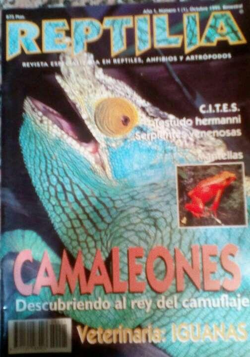 Imagen Revista Reptilia N°1 Camaleones