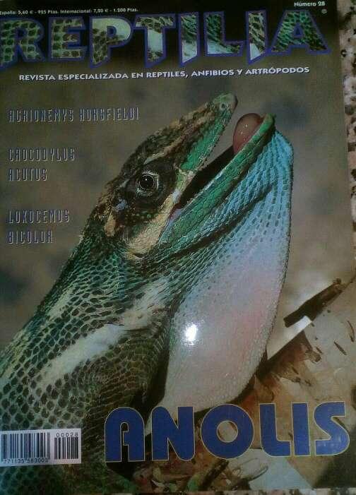 Imagen Revista Reptilia reptiles N° 28 Anolis