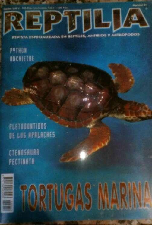 Imagen Revista Reptilia reptiles N° 31 Tortugas Marinas