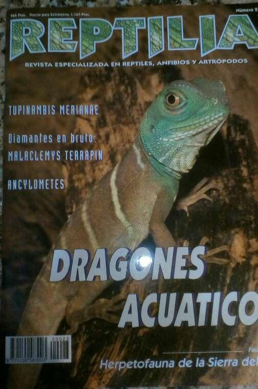 Imagen Revista Reptilia reptiles N° 23 Dragones Acuáticos