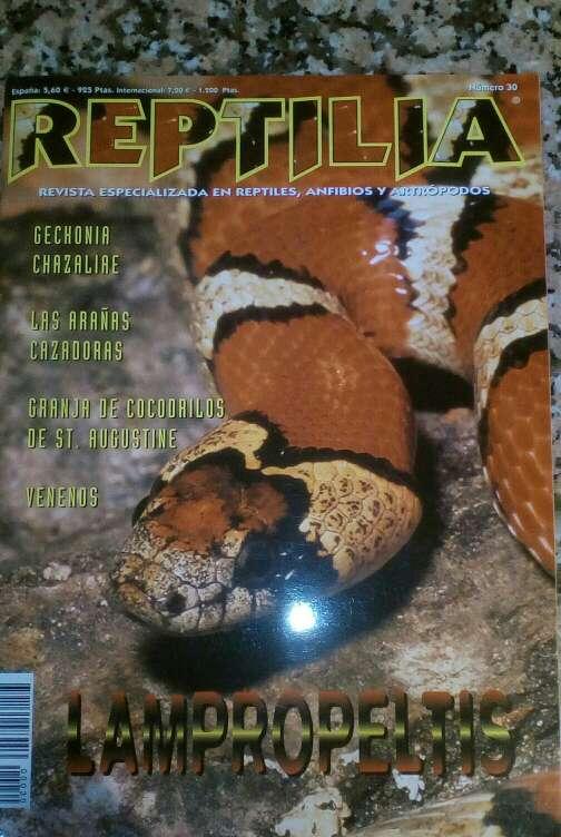 Imagen Revista Reptilia reptiles N° 30 Lampropeltis
