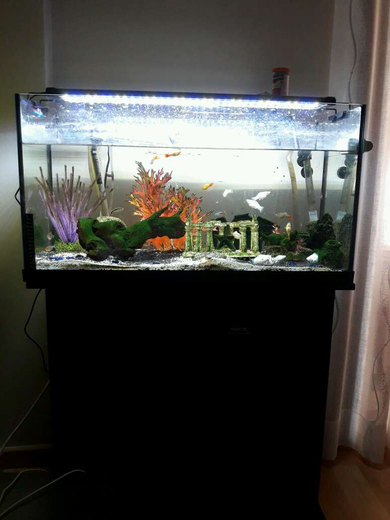 Imagen producto Aquari 120 litros 2