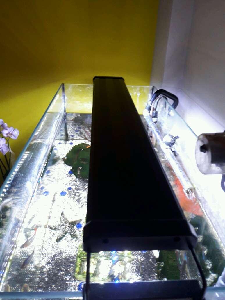 Imagen producto Aquari 120 litros 3
