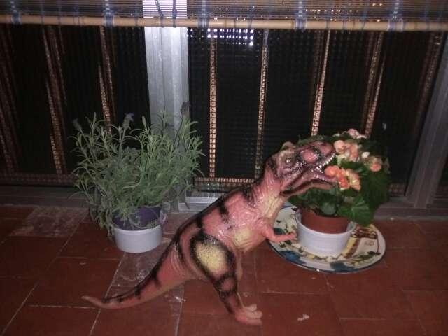 Imagen producto Dinosaurio 50 centímetros 2