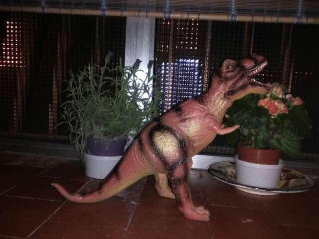 Imagen dinosaurio 50 centímetros