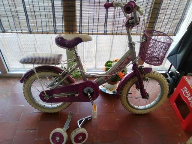 Imagen producto Bicicleta niña con ruedines 1