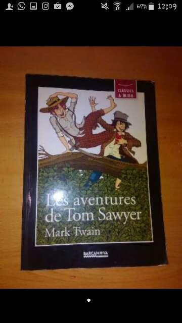 Imagen Libro de las aventuras de Tom Sayer.