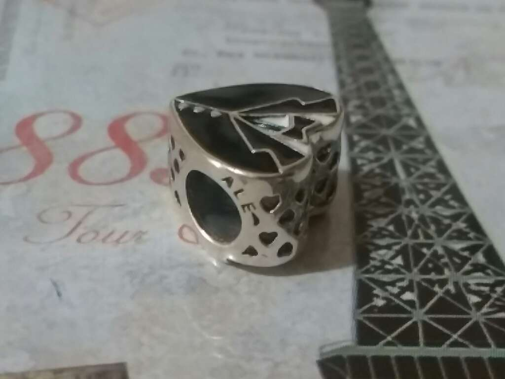 Imagen producto Charms (Caballero)  3