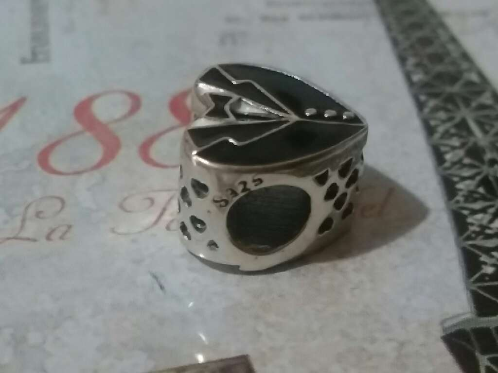 Imagen producto Charms (Caballero)  4