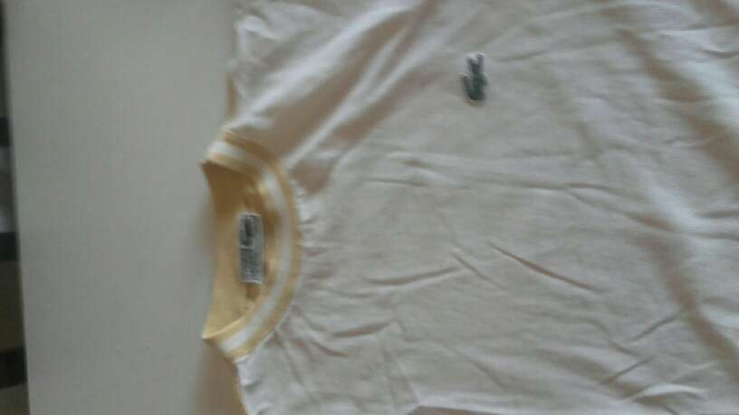 Imagen camisa lacoste