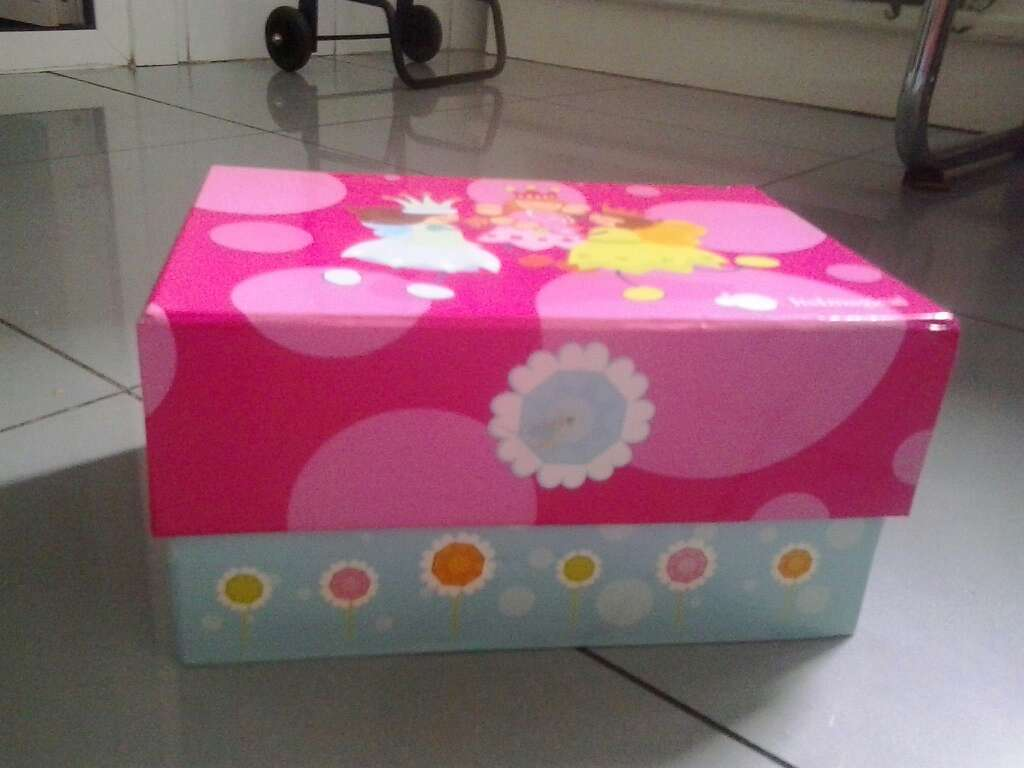 Imagen producto Caja infantil niña 2