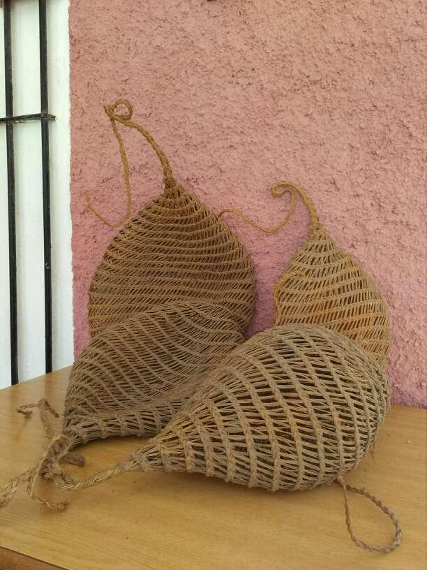 Imagen cernachos para coger caracoles