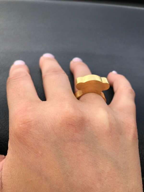 Imagen anillo oso