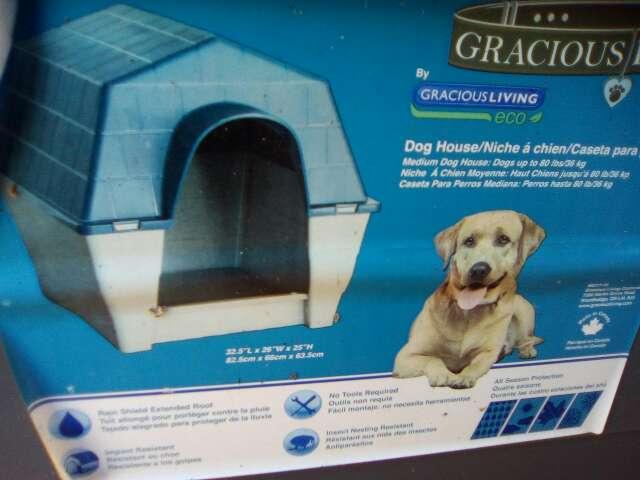 Imagen casa grande de perro