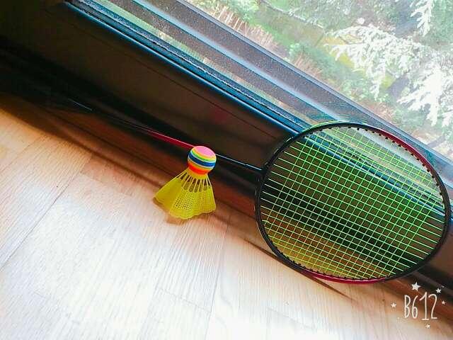 Imagen Raqueta de Tenis