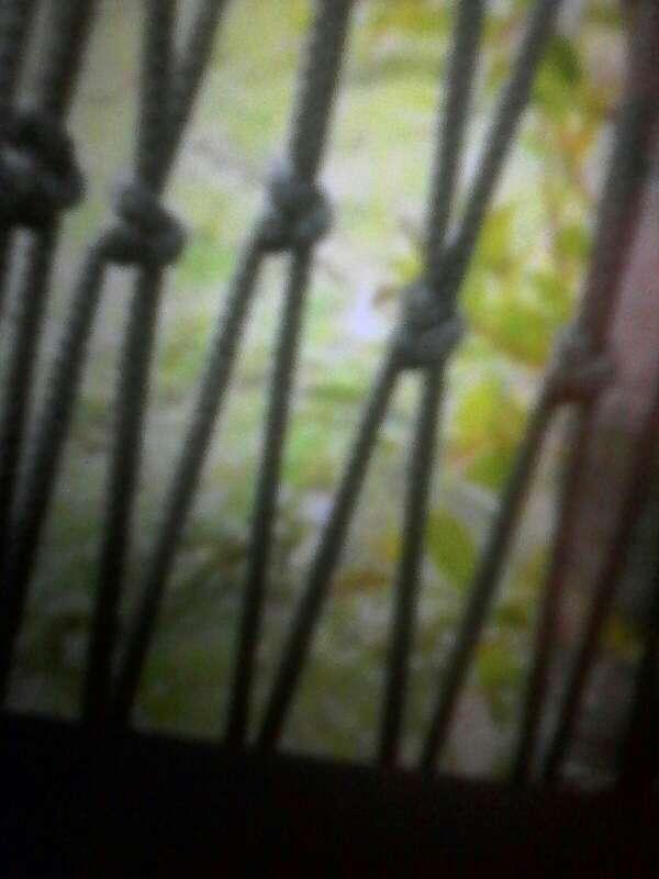 Imagen producto Hamaca para colgar 3