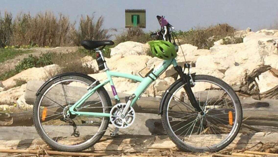 Imagen Bicicleta de paseo y campo
