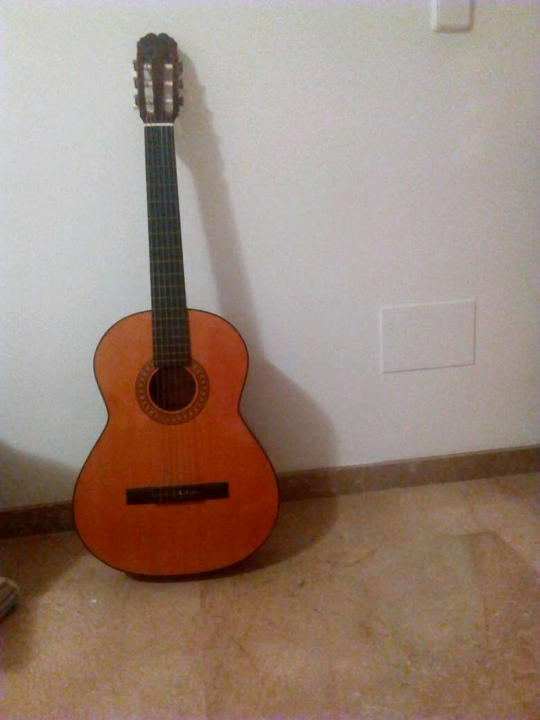 Imagen guitarra marca paloma