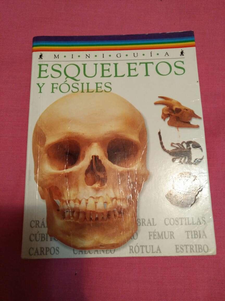 Imagen Esqueletos y fosiles