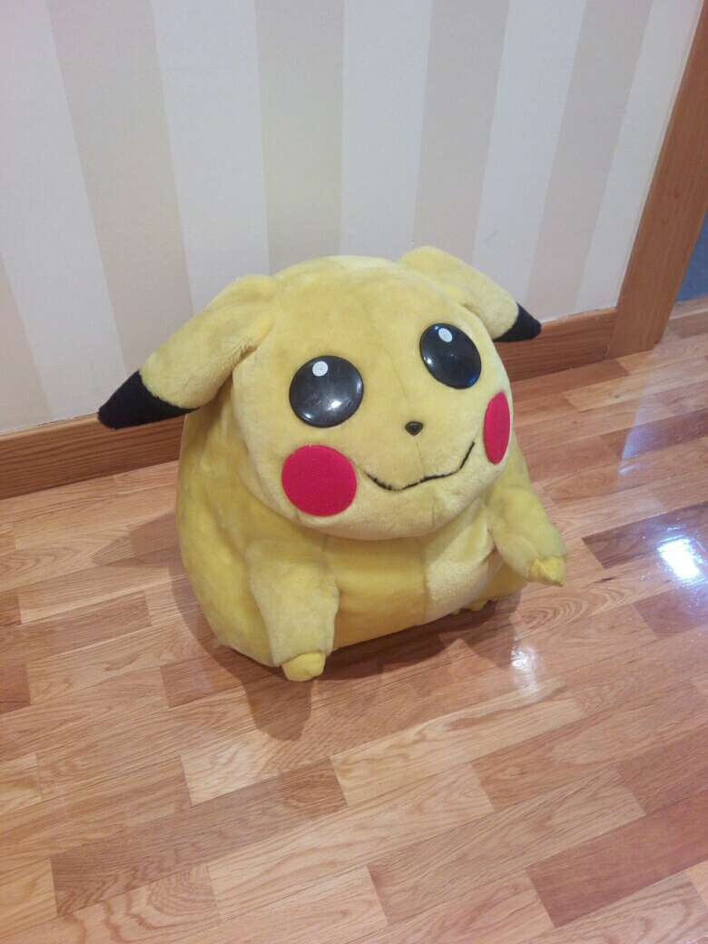 Imagen Pikachu peluche
