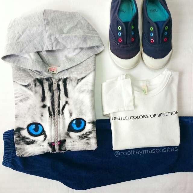 Imagen producto Chaqueta gris gato zapatillas lona azules  4