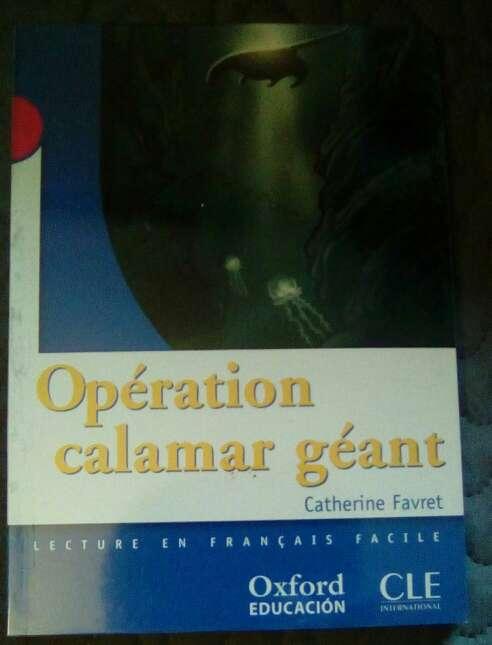Imagen Francés, Operation calamar geant