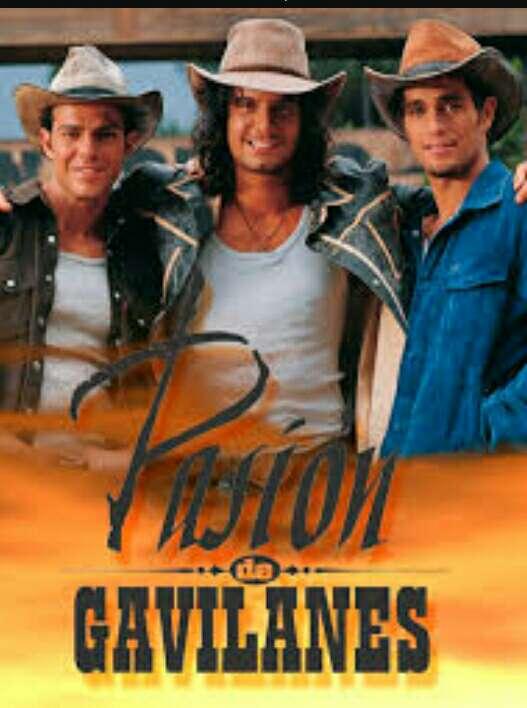 Imagen telenovela pasion de gavilanes