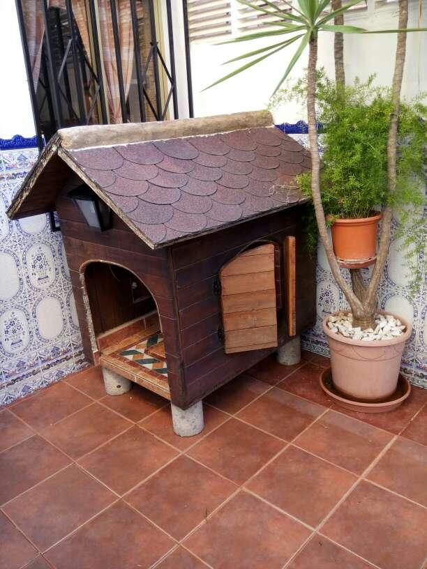 Imagen casa de perro