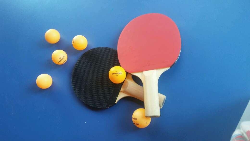 Imagen producto Mesa de pin pong 3