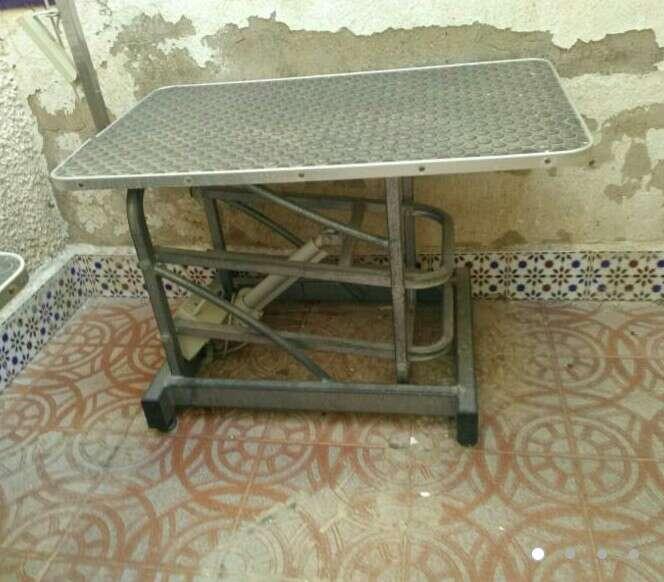 Imagen mesas y secadora electricas animales