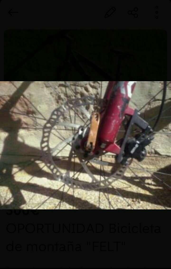 Imagen producto Bicicleta Felt 3