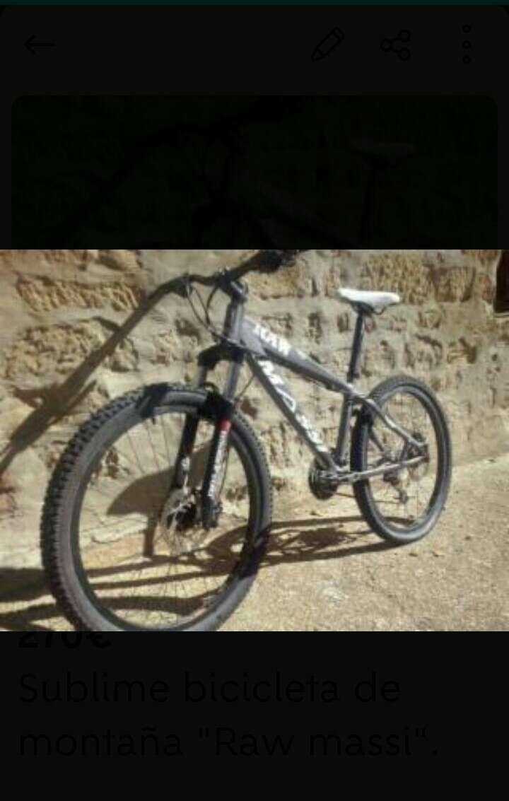 Imagen Bicicleta Raw massi