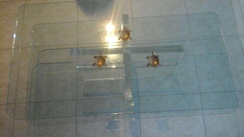 Imagen producto Mesa de cristal 4