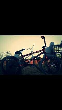 Imagen Bmx Felt Bikes