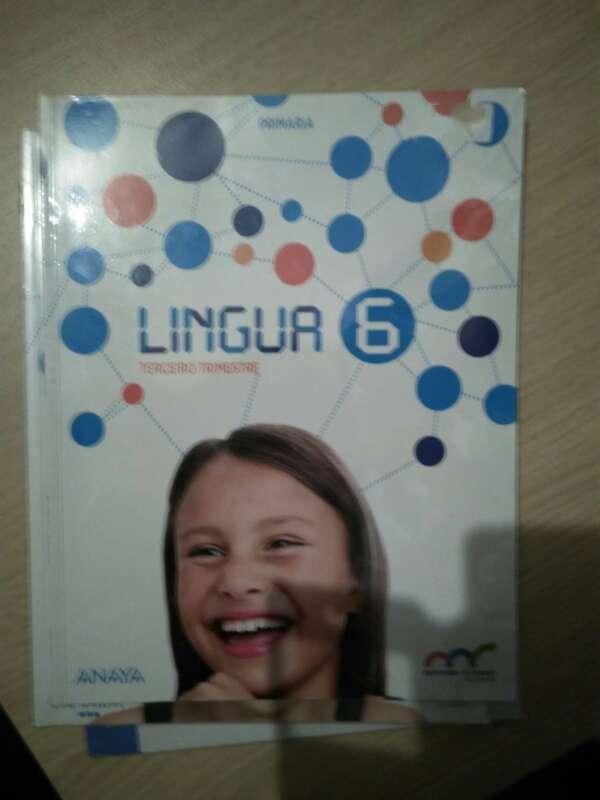 Imagen producto Libros sexto primaria 3