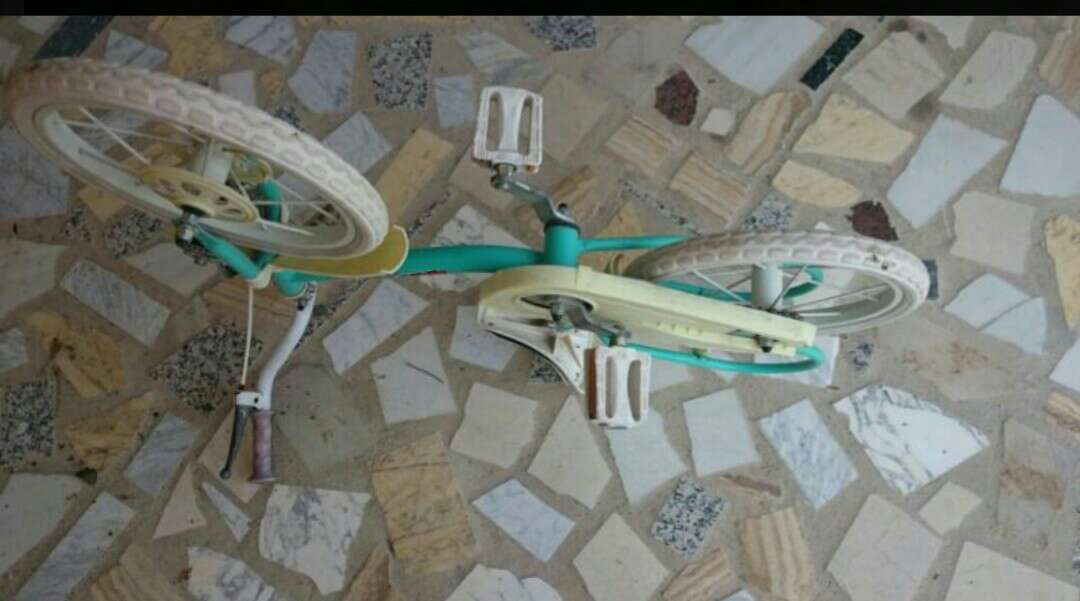 Imagen producto Bicicleta niña  2