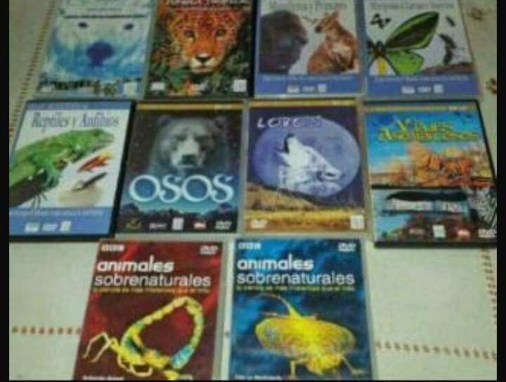 Imagen producto DVD.s animales  1
