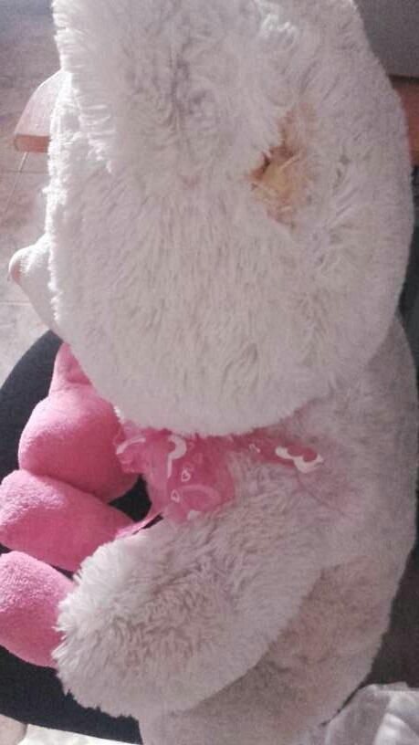 Imagen producto Oso peluche blanco y rosa 2