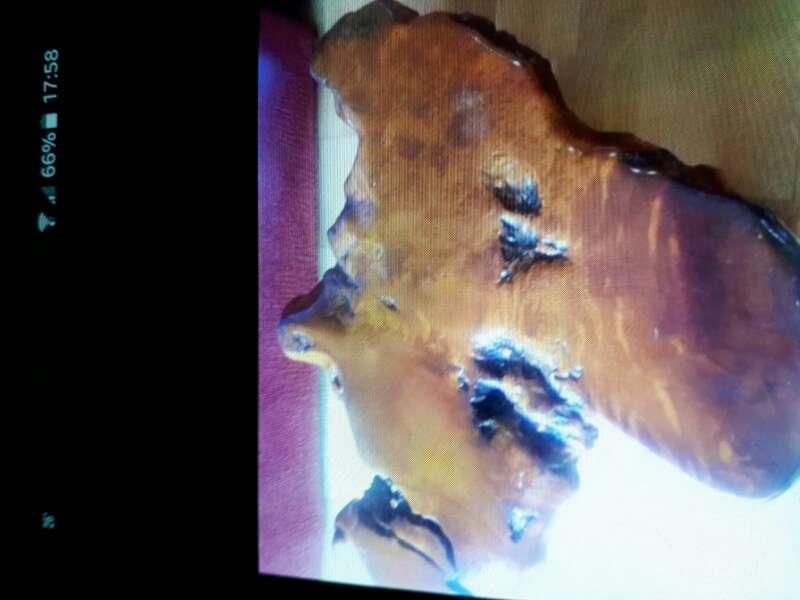 Imagen mesa raiz sequoia