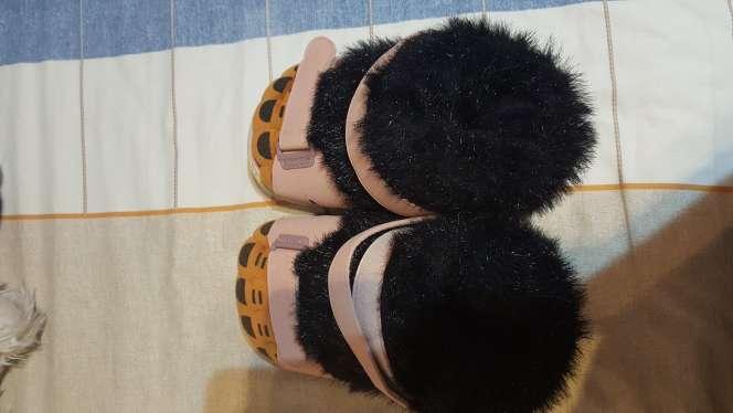 Imagen zapatillas oso