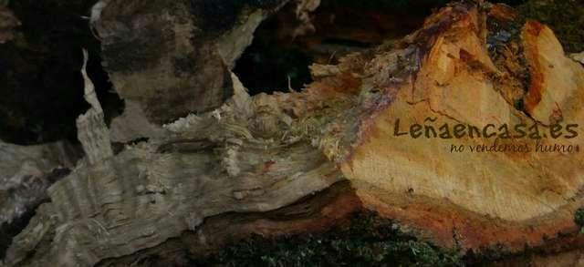 Imagen leña seca roble/eucalipto