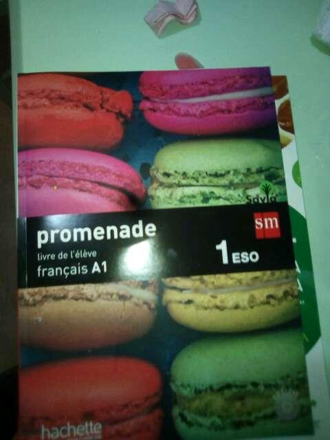 Imagen promenade( libro de textos de francés)